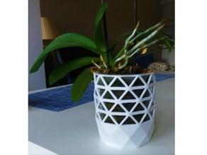 Orquid Flower Pot