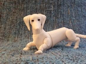 dachshund (BJD)