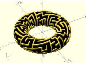 Torus maze