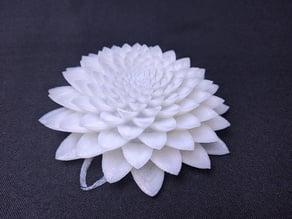 Poly Lotus Novatrope