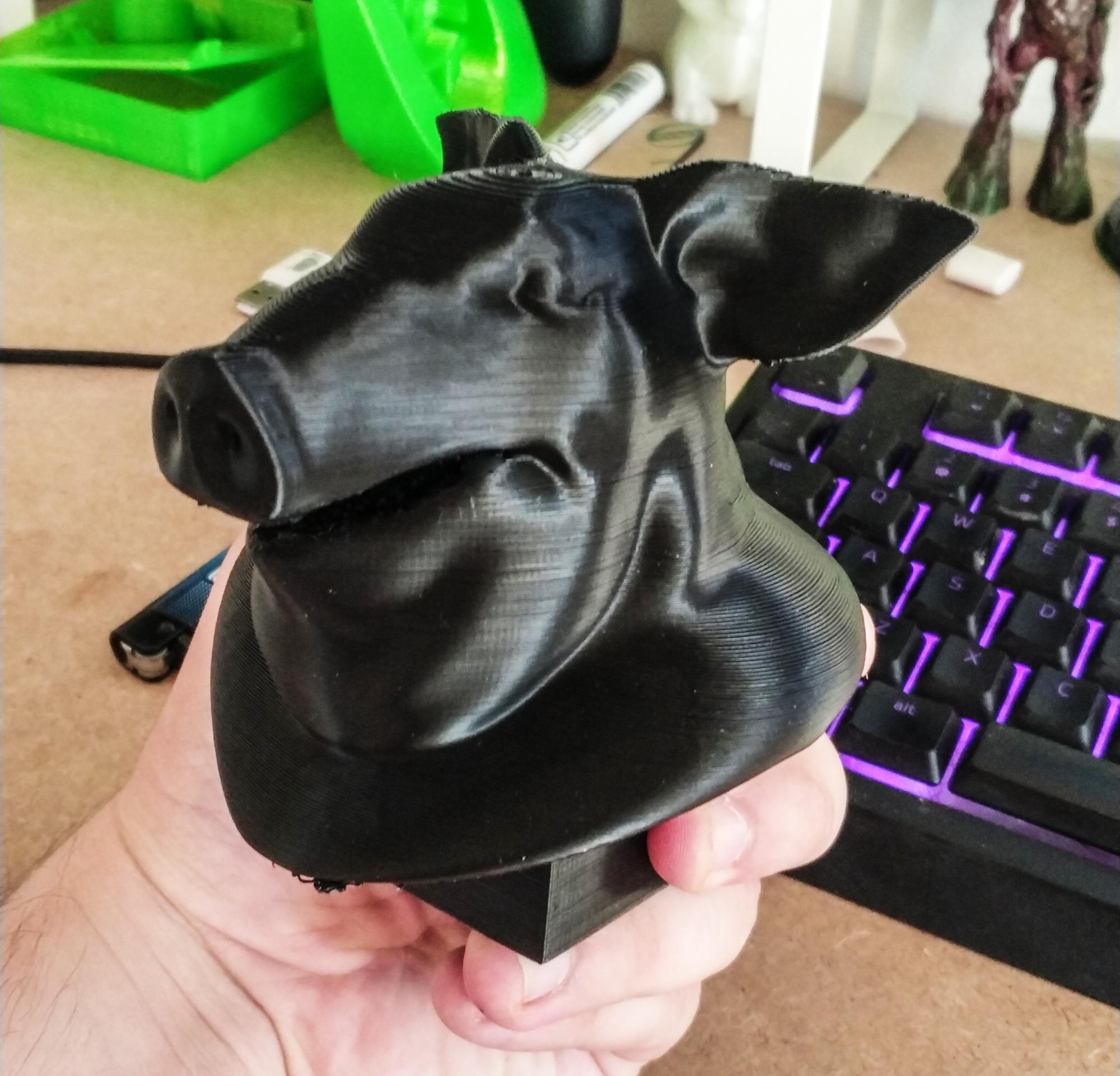 Test Geometry Pig Head SideFX