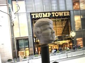 President Donald Trump Valve Cap Schrader