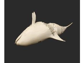 Orca Dead Cthulhu
