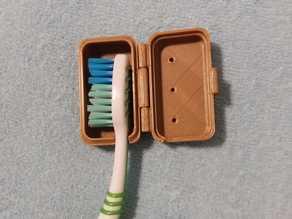 Toothbrush Case