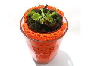 Voronoi planter for glass