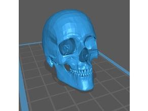 EllPro Skull