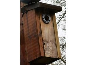 Bird nest box hole/protector