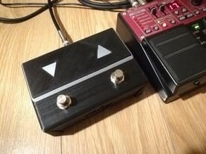 Pedal switch (looper, guitar)