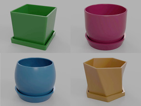 Pots with Trays and Drainage