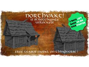 Northvakt Kickstarter teaser model, tiny medieval viking house