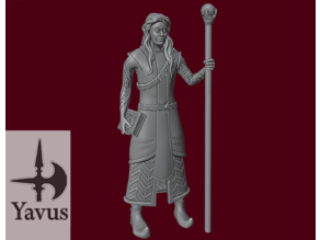 Elven Wizard - Robe, Grimoire and Staff