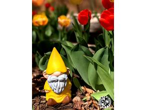 Gus the Gnome