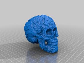 naturalised skull - gubbins