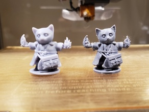 D&D Tabaxi Kitten Sorcerer Warlock