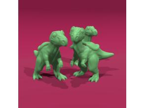 Friendly Raptor
