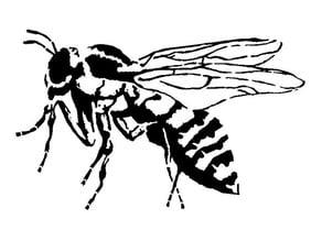 Bee stencil 2