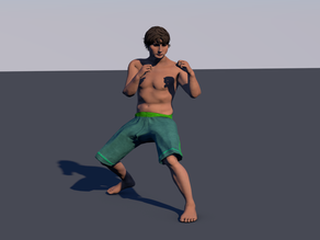 Man Fight Position