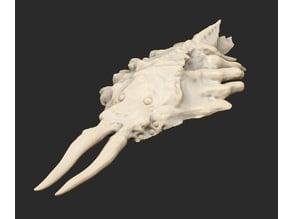 Leviathan Various x4 Cthulhu