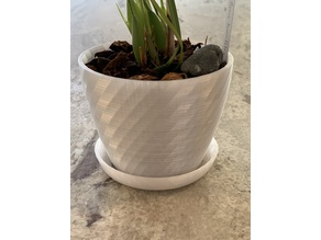 Orchid Pot with Water-Holding Base