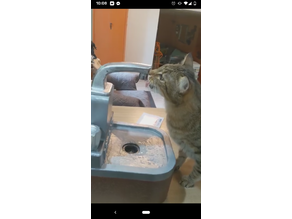 Cat Drink Sink