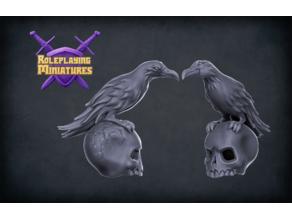 Raven & Skull