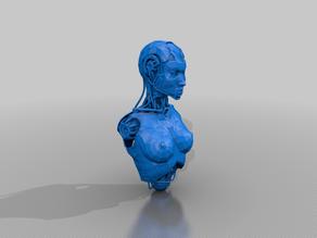 android torso