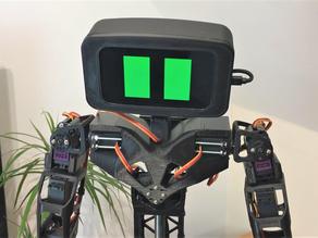 Aster Humanoid Robot