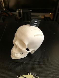 Skull pick holder