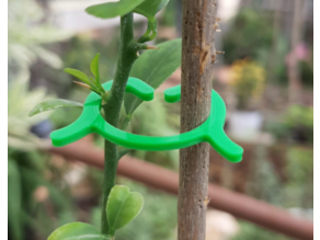 Clips for plants