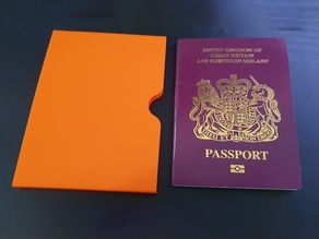 Compact Passport Protector