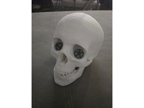 Skull Dice Tower