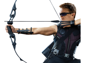 Hawkeye Archery Guard