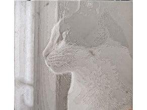 Cat Litophane 01