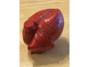 Anatomical Heart Puzzle