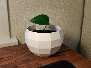 Low Poly Plant Pot
