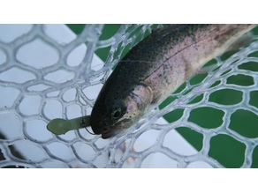 Fishing lure for trout