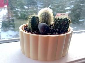 Flower Pot / Cactus Pot