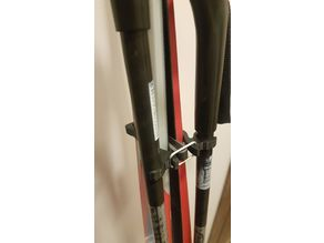 Clips for skis and poles