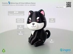 Shiba Inu / 柴犬