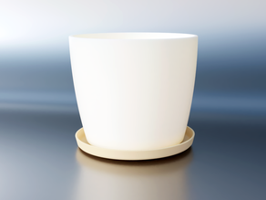 Plant pot with plate