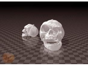 Halloween Pumpkin Skull