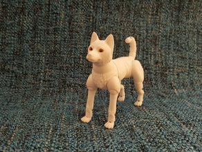 jindo dog (BJD)