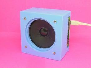 Raspberry Pi DIY Speakers