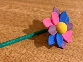 Flower Multicolor