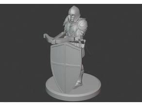 Heavy Shield Crossbowman (See Description!)