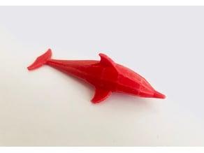 Geometrical Dolphin
