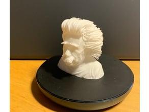 Hairy Albert Einstein Bust