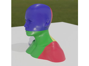 Printable Mannequin Head with Shoulders