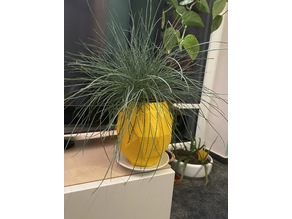pineapple planter with hole