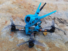Gnarly Primo Eagle, Ratel, Caddx Vista Canopy and VTX/RX mount